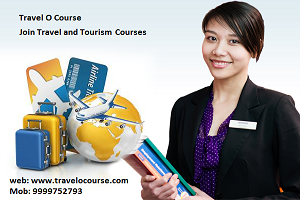 The Most Successful Method to Pick Tourism Course for You